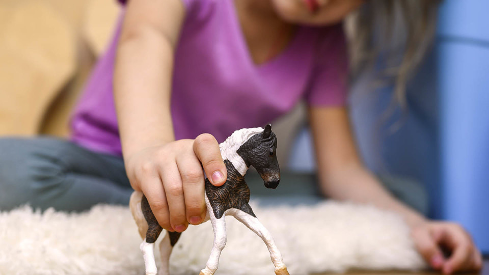 Newsroom Image - child playing with toy horse