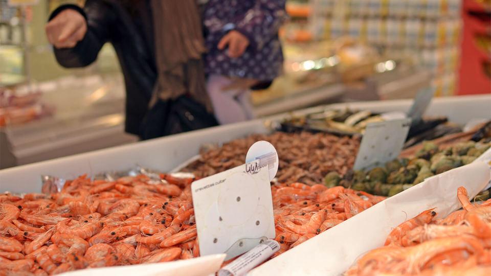 Newsroom - seafood - food poisoning - E.coli