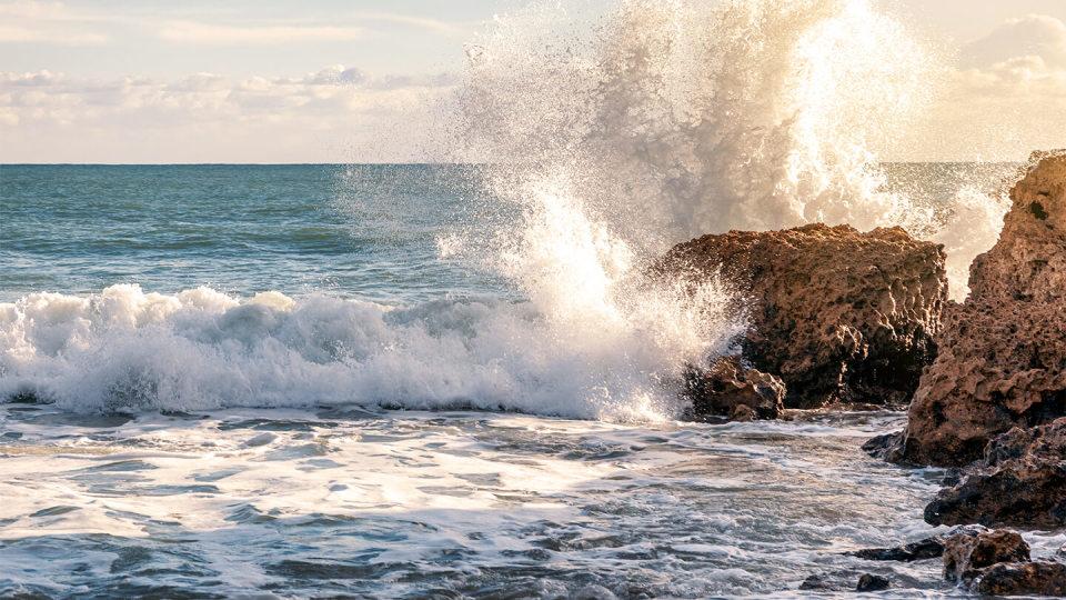 Newsroom - sea - cliffs - waves